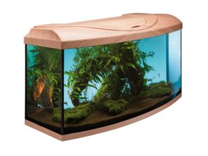 AQUARIUM START UP60 EQUIPE 60x30x30cm HETRE/BOMBE
